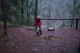 E võttis loomadele õunu kaasa ja jagas neid laiali mööda metsa