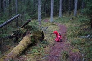 """E kükitamas """"karu koopa"""" ees, ta nii siiralt lootis, et mõmm tuleb välja..."""