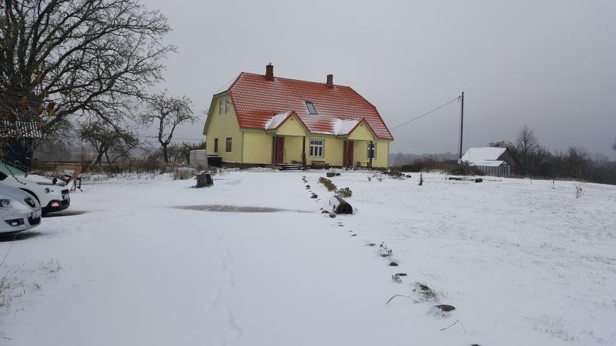 Lumi, lumi…a kus onpildid?