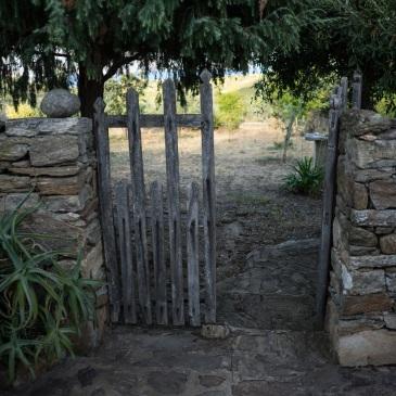 vana aed